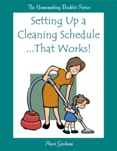 Setting Up a Cleaning Schedule That Works (Kindle book)