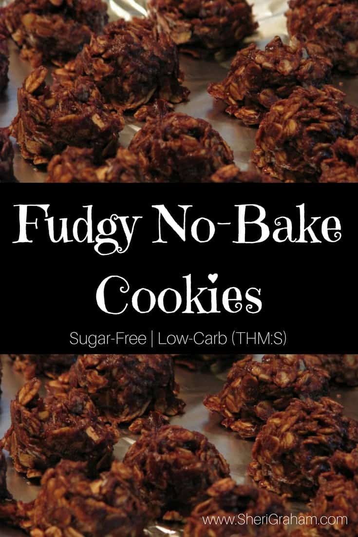 Fix these Fudgy No-Bake Cookies with NO GUILT!