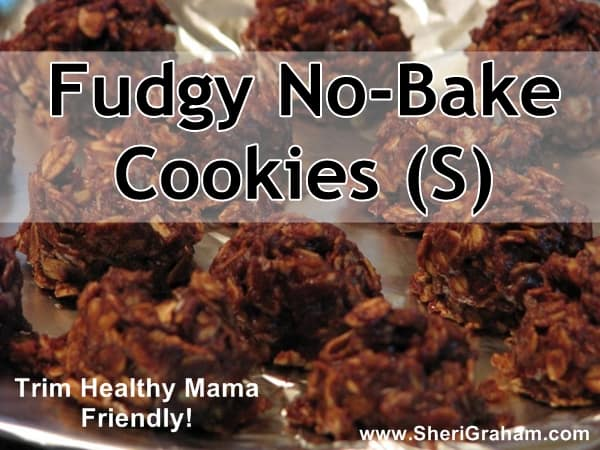 Fudgy No-Bake Cookies (S) - A Trim Healthy Mama Treat!