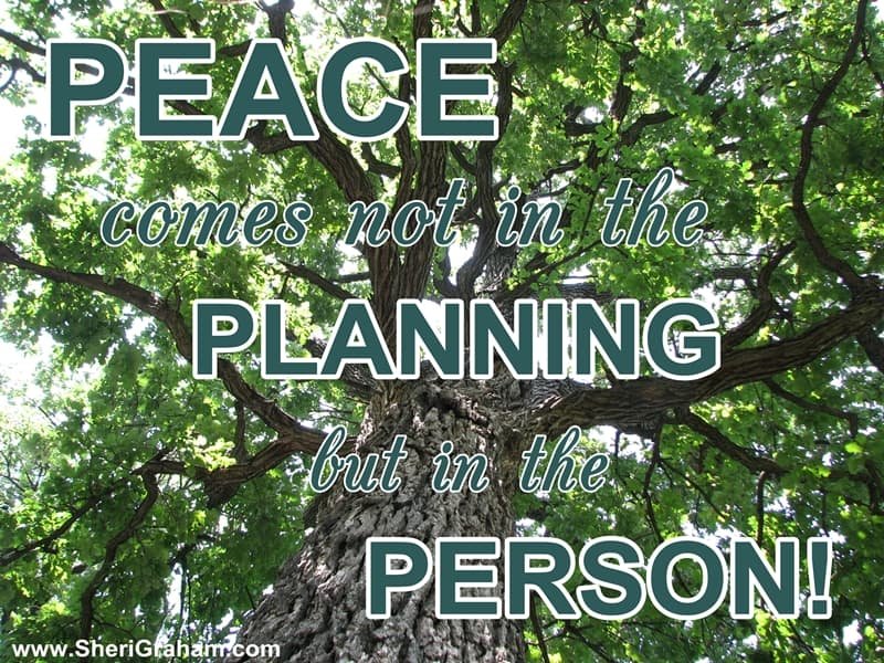 PEACE comes not in the PLANNING but in the PERSON!