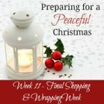 Preparing for a Peaceful Christmas {Week 11}