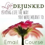 Life Dejunked Email Course