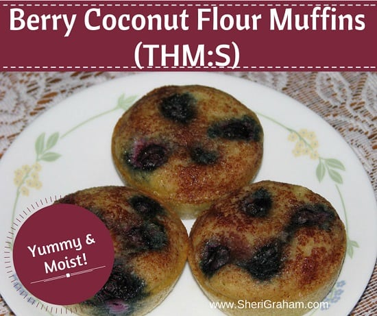 Berry Coconut Flour Muffins {THM:S}