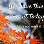 We Have This Moment Today {Let's not miss it!}