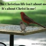 The Christian life isn't about me -- It's about Christ in me!