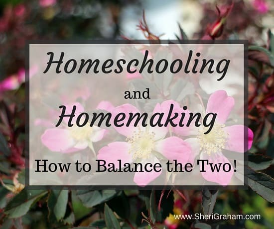 Homeschooling and Homemaking - How to Balance the Two