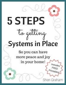 5 Steps to Getting Systems in Place-small