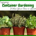 Enjoying Container Gardening