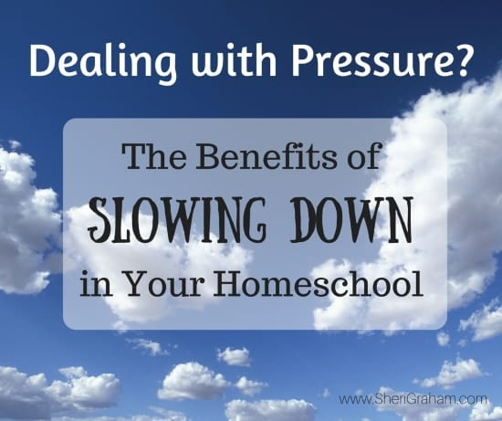 Dealing with Pressure-The Benefits of Slowing Down In Your Homeschool