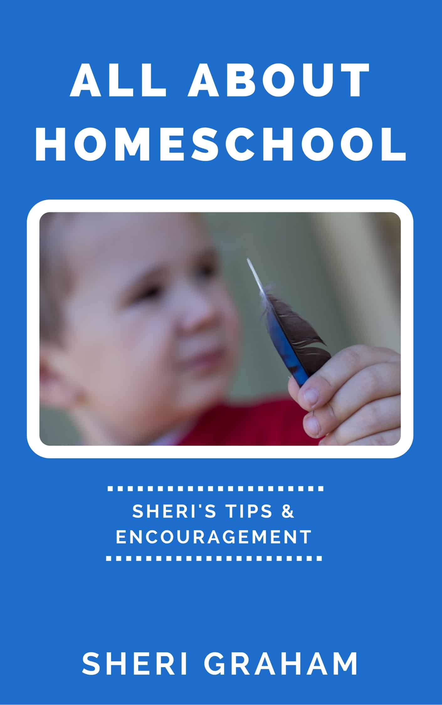 All About Homeschool (eBook)