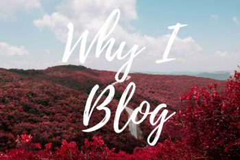 "Why I Blog (Find out the ""why"" behind what I do here!)"