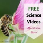 Free Science Videos Your Kids Will Love