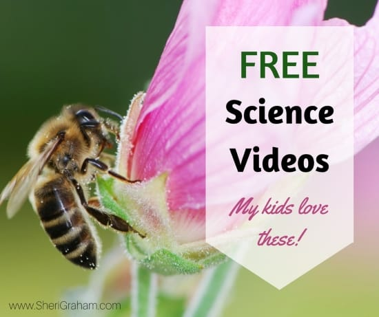 FREE Science Videos