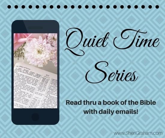 Quiet Time Series