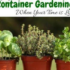 Enjoying Container Gardening