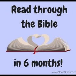 Read through the Bible in 6 months