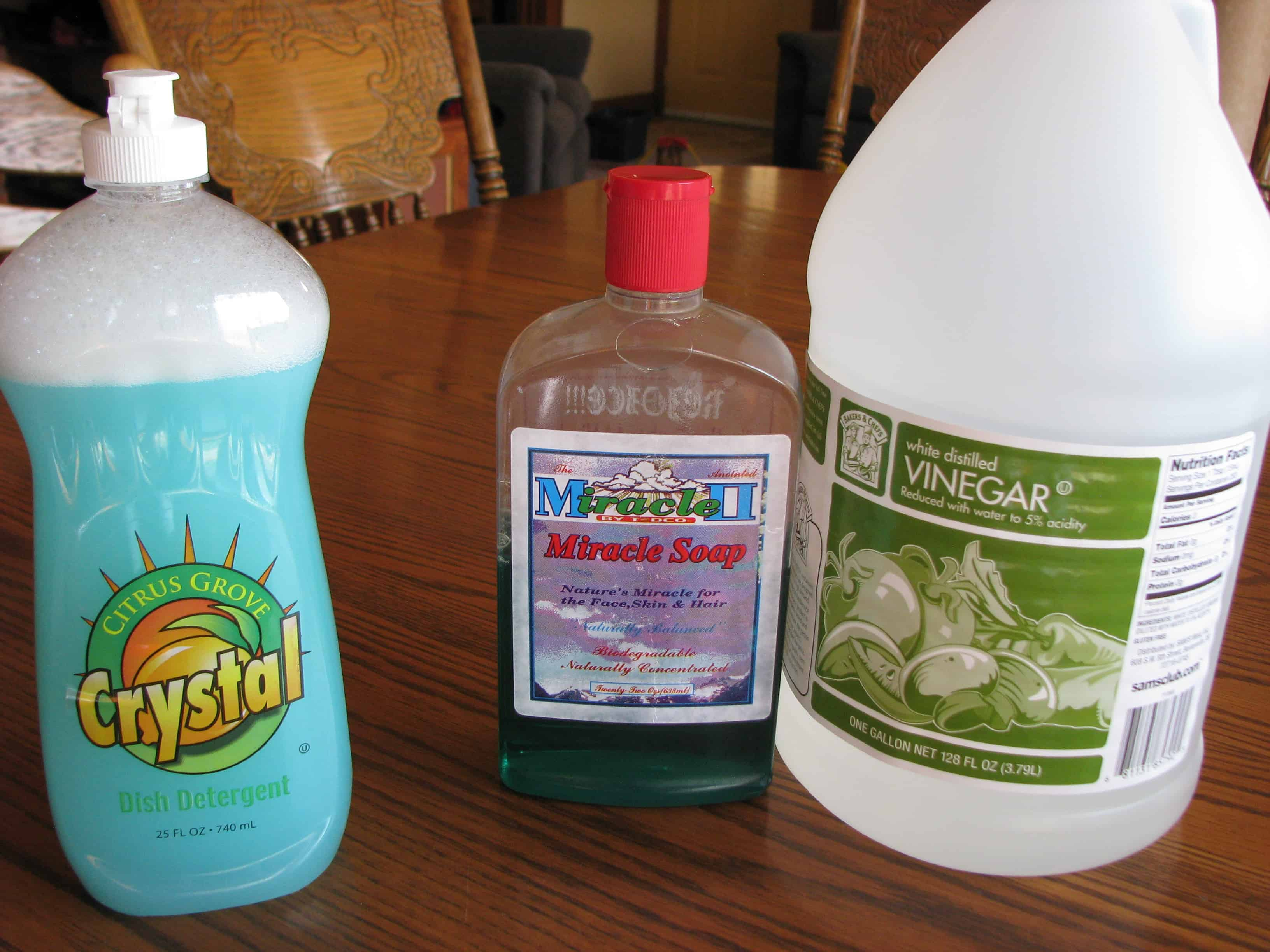 Natural Cleaners: Dish Soap