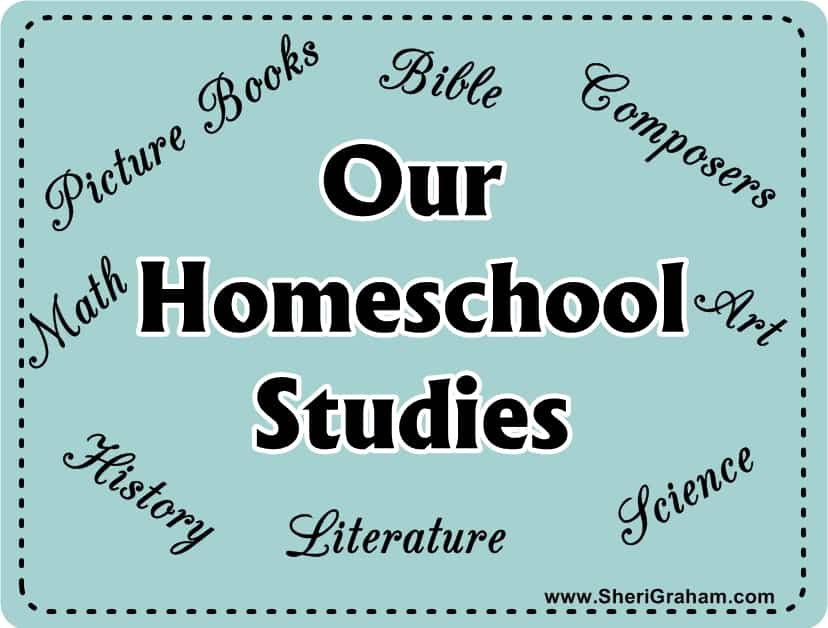 Our Homeschool Studies