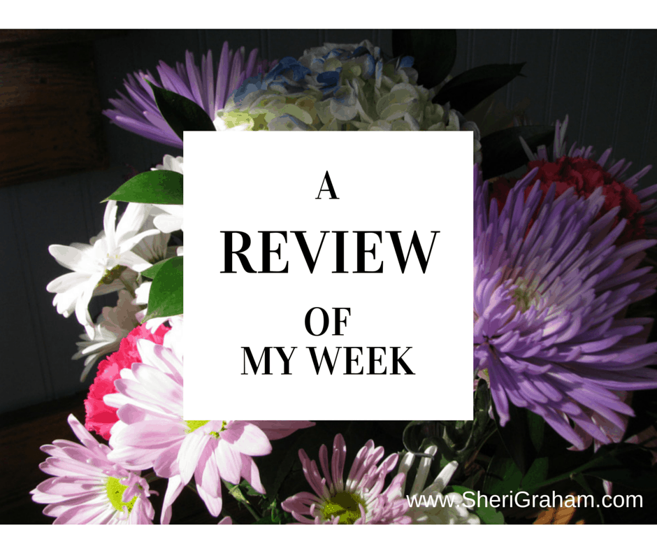 A Review of My Week {1/23/15}