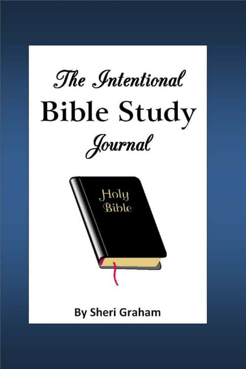 NEW! The Intentional Bible Study Journal {softcover}
