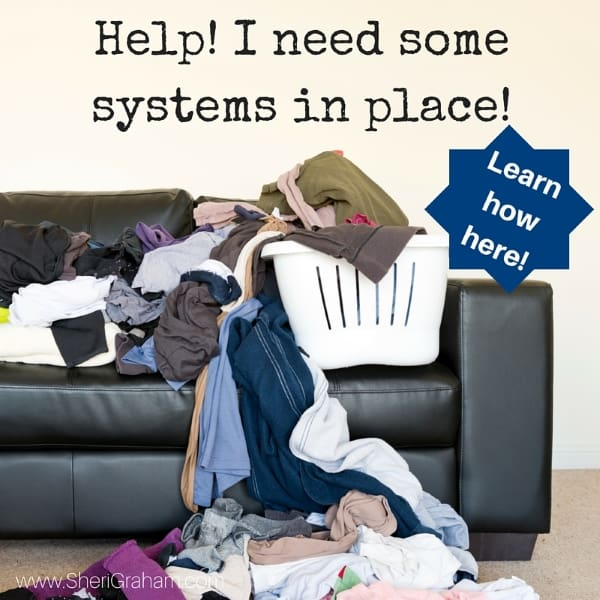 Help! I Need Some Systems in Place! Let me help you get some systems in place so you can have more peace and joy in your home!