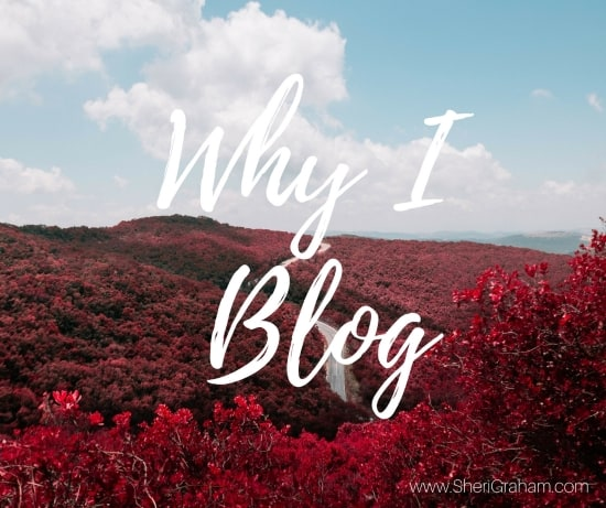why-i-blog
