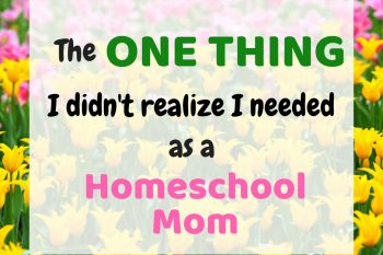 The One Thing I Didn't Realize I Needed as a Homeschool Mom