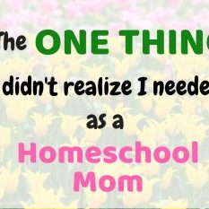 The One Thing I Did Not Realize I Needed as a Homeschool Mom